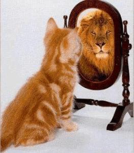 önbizalom hiány, önbizalom növelése, önbizalom tréning